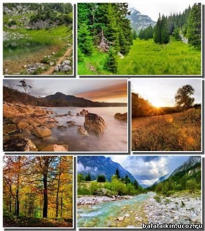 Картинки природы архивом